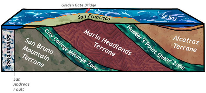 A cross-section of the rocks beneath San Francisco, California. From the west to the east, this diagram shows the Salinian block (granites akin to the Sierra Nevada), then the vertical San Andreas Fault, then the San Bruno Mountain Terrane (shale and sandstone), then the City College Mélange Zone, the Marin Headlands Terrane (shown as chevron-folded chert, but also including basalt and shale), the Hunter's Point Shear Zone (serpentinite mélange), and the Alcatraz Terrane (sandstone) beneath downtown and the San Francisco Bay. All the terranes dip to the east, though the dip shallows out under the Bay (furthest east).