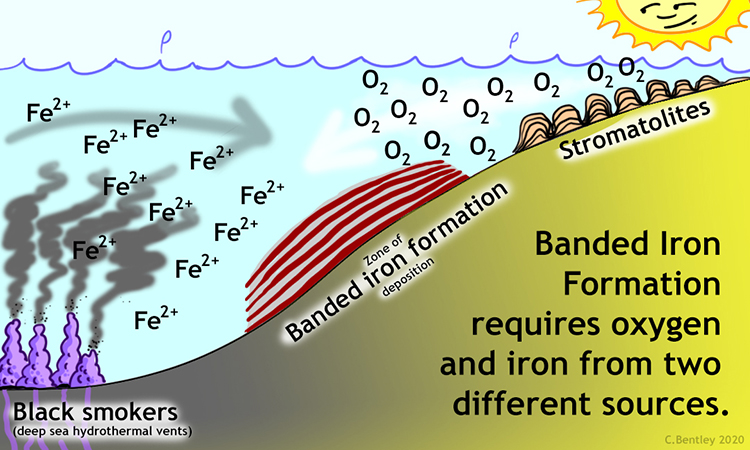 "Cartoon showing that banded iron formation requires inputs of oxygen and iron from two different sources. The iron is provided by exhalations from deep sea hydrothermal vents called ""black smokers,"" and the oxygen is a waste product of photosynthesis by microbial mats such as those that form stromatolites. Where the two dissolved constitutents meet, BIF forms."