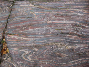 A photograph of a pavement (horzontal) outcrop of tightly folded banded iron formation, showing assymetric folding and quartz veins cutting across some beds, perpendicular to bedding. A pencil provides a sense of scale.