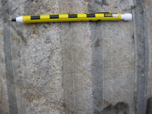 A photograph showing vertical beds of graywacke and mudrock in cross-section, with two of the beds showing a prominent grading: coarse on the left and then getting finer to the right. A pencil provides a sense of scale.