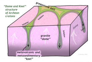 """A block diagram showing the structure of a typical Archean craton, such as the Pilbara. Broad round granite """"domes"""" are shown rising vertically, while thin metavolcanic and metasedimentary """"keels"""" sink downward between the domes. In map view, the surface outcrop pattern is round blobs of granite separated by a branching cuspate belt of metavolcanic and metasedimentary rocks."""
