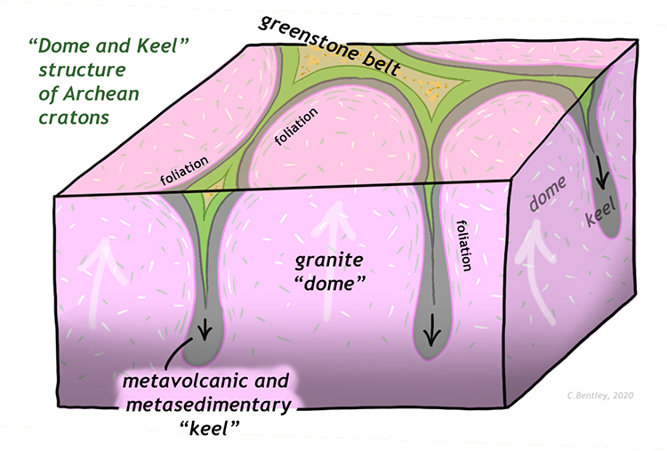 "A block diagram showing the structure of a typical Archean craton, such as the Pilbara. Broad round granite ""domes"" are shown rising vertically, while thin metavolcanic and metasedimentary ""keels"" sink downward between the domes. In map view, the surface outcrop pattern is round blobs of granite separated by a branching cuspate belt of metavolcanic and metasedimentary rocks."