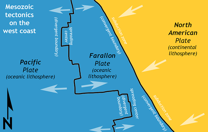 A map showing the tectonic situation on the west coast during the Mesozoic Era. There are three plates. From west to east, they are the Pacific Plate, Farallon Plate, and North American Plate. The boundary between the Pacific and Farallon is divergent (a spreading center). The boundary between the Farallon and the North American is convergent (a subduction zone).