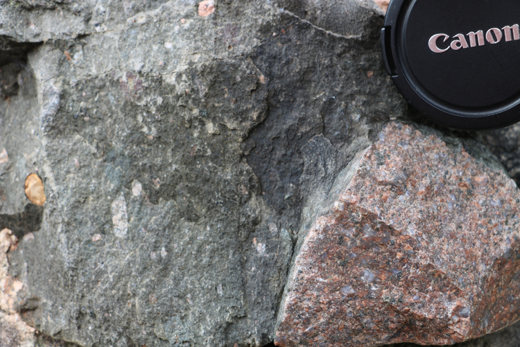 Photograph showing a large faceted pink granite clast in metadiamictite. A lens cap provides a sense of scale.
