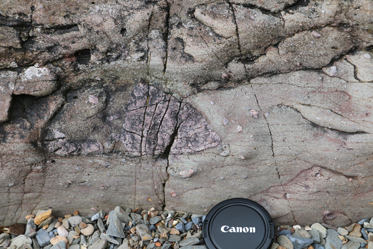 Photograph showing an oblong outsized granite clasts in metadiamictite. A lens cap provides a sense of scale.