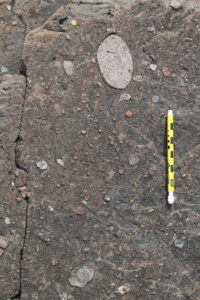 Photograph showing a large round (cobble-sized) clast within a poorly sorted diamictite, with a pencil for scale.
