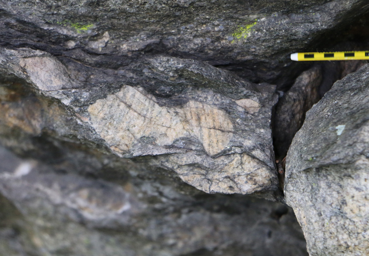 Photograph showing an outcrop of metadiamictite, where one big clast is breaking into sausage-link segments (brittle ductile deformation). Pencil for scale.
