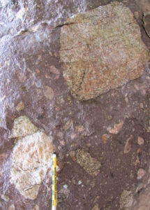 Photograph showing a 1 m by 0.5 m outcrop of purple colored diamictite with pink clasts. A pencil provides a sense of scale.