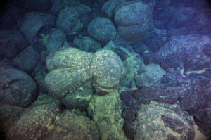Pillow basalts near the Juan de Fuca Ridge, Pacific Northwest, USA.