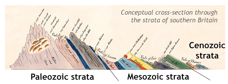 A historical cartoon cross-section through the strata of southern Britain, from western Wales on the left to the region around London on the right. 19 different rock layers are shown, of varying thickness, all tilted to the right (east).