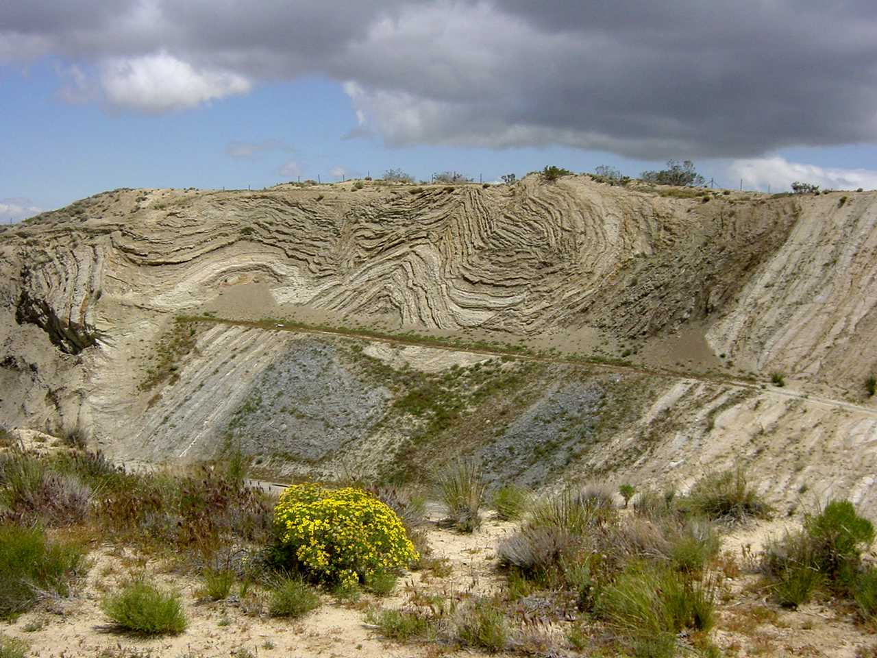 Folds exposed in a roadcut along Highway 14 in Palmdale, California, adjacent to San Andreas fault. With permission by: Garry Hayes and Susan Hayes from: http://geotripperimages.com/Tectonic_Processes/Folds.htm