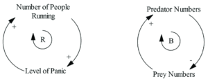Examples of amplifying (positive) and balancing (negative) feedback loops. Amplifying feedback loops tend to further force a system that is out of balance further out of balance. Balancing feedback loops represent sustainability, in this case, the predator/prey relationship. (Source: Neely and Walters, 2016)