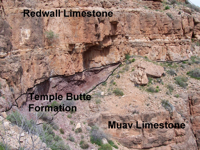 Redwall, Temple Butte and Muav formations in the Grand Canyon. An erosional surface (disconformity) exists between both the Muav Limestone and the Temple Butte formations as well as between the Temple Butte and the Redwall Limestone formations. Credit: National Park Service from: https://upload.wikimedia.org/wikipedia/commons/e/eb/Redwall%2C_Temple_Butte_and_Muav_formations_in_Grand_Canyon.jpg United States Public Domain.
