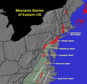 Mesozoic rift basins of eastern North America. These basins are filled with Triassic and Jurassic age sediment that sometimes contains evidence of dinosaur bodies (body fossils) or activities (trace fossils).