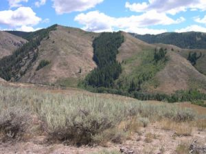 Slope aspect and its effect on vegetation near Anderson Ranch, Idaho. South-facing slopes get much more direct sunlight and less snow over. They sustain lower growing, desert flora. North-facing slopes hold snow cover and moisture longer and can support healthy forests.