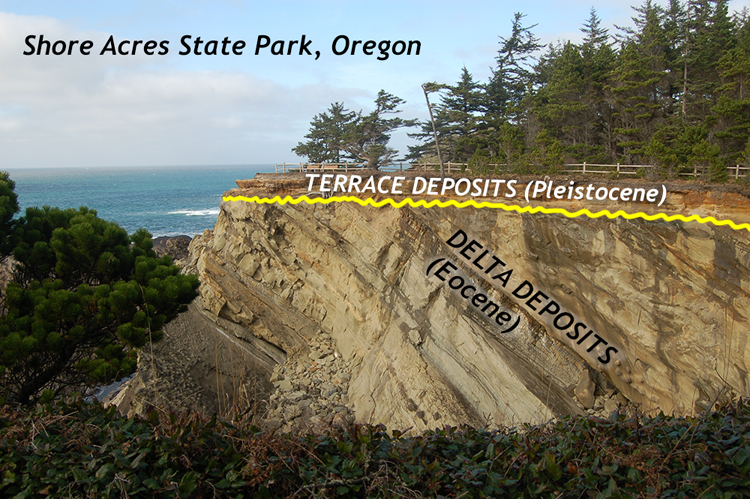 Annotated photo showing a cliff with beach below, and forest above. A fence runs along the edge of the cliff. The cliff mostly shows layers of gray rock that tilt to the right. The uppermost 2 meters of the cliff show horiztontal sedimentary layers.