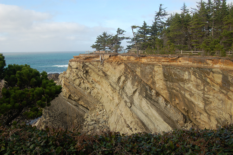 Photo showing a cliff with beach below, and forest above. A fence runs along the edge of the cliff. The cliff mostly shows layers of gray rock that tilt to the right. The uppermost 2 meters of the cliff show horiztontal sedimentary layers.
