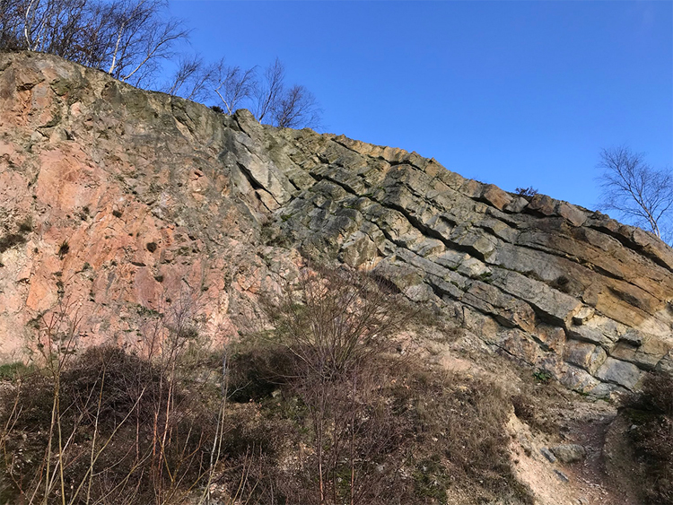A photograph showing a quarry wall, with some minor vegetation in the foreground. On the left, the quarry wall is a massive pink granite-like rock. On the right are tilted sandstone layers, dipping to the right.