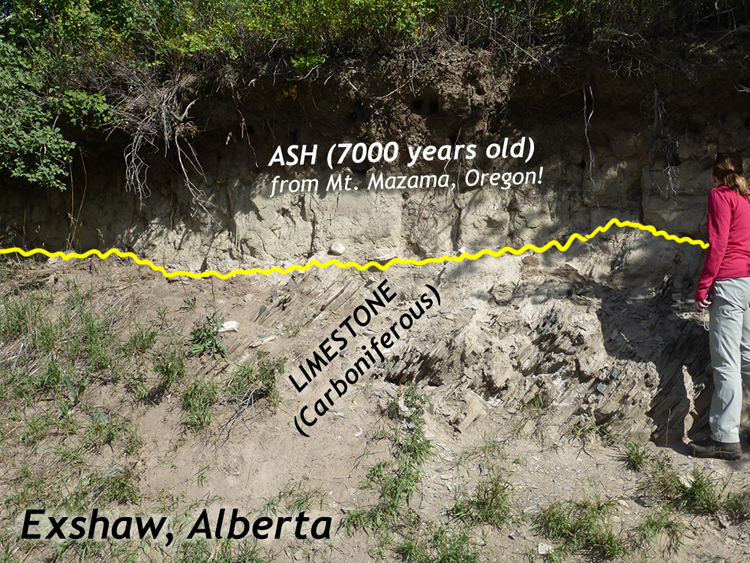 Annotated photograph showing a gentle hillside, a total of about 3 meters tall, with white ash making a steep slope at the top (covered above by vegetation). The bottom of the slope shows steeply tilted layers of limestone, dipping to the left. A person provides a sense of scale.