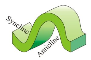 Cartoon showing the relationship between an adjacent syncline and anticline: they share a limb.