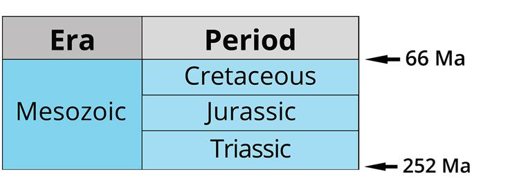 The three periods of the Mesozoic era. Image by Jonathan R. Hendricks. Creative Commons License This work is licensed under a Creative Commons Attribution-ShareAlike 4.0 International License.
