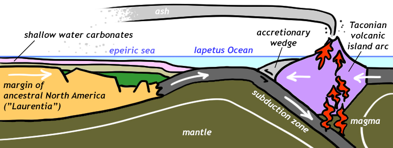 Cartoon showing the situation prior to the Taconian Orogeny, with subduction of oceanic lithosphere on the leading edge of the ancestral North American plate beneath an overriding oceanic plate. The resulting volcanic island arc draws ever closer, with an accretionary wedge forming at the trench where subduction begins. North America's margin shows as-yet-horizontal sedimentary layers (including shallow-water carbonates) that have formed in an epeiric sea.