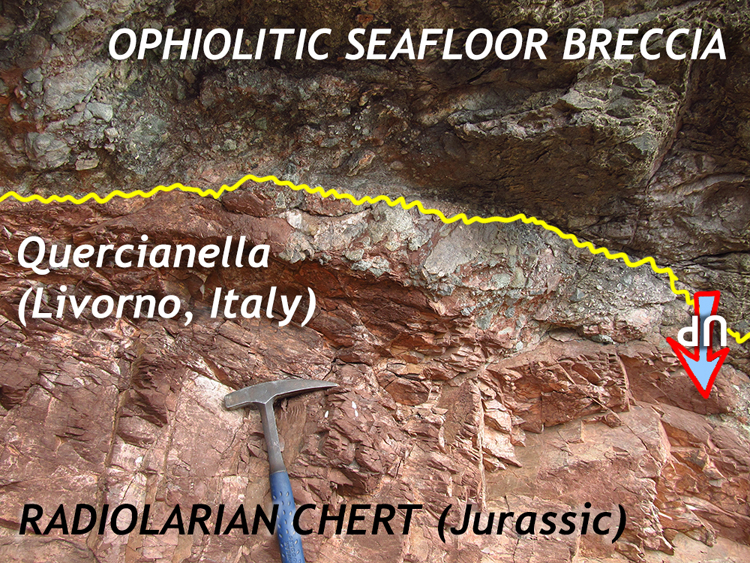 """An annotated photo showing the horizontal contact between two rock units: a lower fine grained red unit, and an upper greenish chunky unit. A hammer provides a sense of scale. An arrow (pointing down) is marked """"UP."""""""