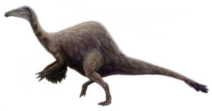The animal is covered with thin feathers, except for longer feathers on its arm and tail.
