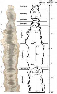 Cut face of a stalagmite from Jeita Cave, Lebanon (Source: EGU).