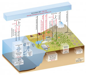 The carbon cycle, including anthropogenic inputs. Pg stands for petagrams of carbon per year. Numbers in boxes represent the total mass of carbon in the reservoir (stock). Numbers next to arrows represent fluxes, or changes in carbon concentrations from 200-2009. Black numbers are natural fluxes. Red numbers are anthropogenic fluxes. Both carbon dioxide and methane, among other carbon compounds, are included (Source: IPCC 5th Assessment Report).