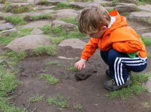 A child pokes its fingers into the soil.