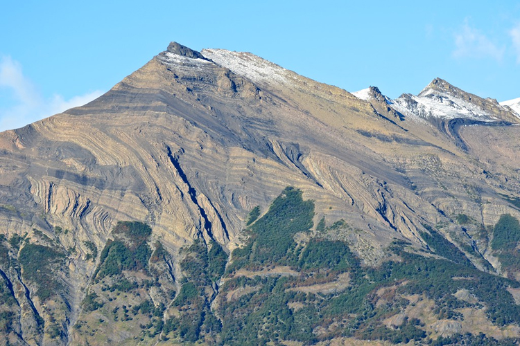 A sunlit mountain, with trees at its base and a bit of snow dusting the top. The area of the mountainside in the middle shows zigzag outcrops of folded and faulted sedimentary layers. The folds have an apparent interlimb angles of 35 to 45 degrees: they are tightly folded!