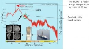 Graph of Paleocene-Eocene paleotemperatures