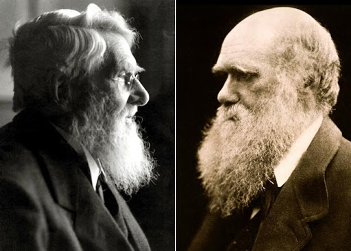 Photo of Alfred Russel Wallace (left) and Charles Darwin (right), co-discoverers of natural selection.