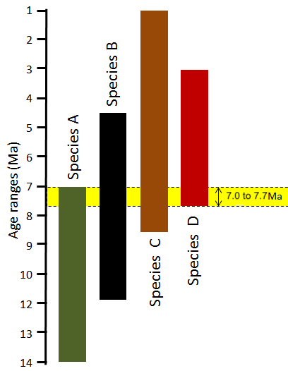 Diagram Left: The application of bracketing to constrain the age of a rock based on several fossils. In this diagram, the colored bars represent the time range during which each of the four species (A, B, C, D) existed on Earth. Although each species lived for several million years, we can narrow down the likely age of the rock to just 700,000 years during which all four species coexisted. Steven Earle. From: https://opentextbc.ca/physicalgeology2ed/chapter/8-3-dating-rocks-using-fossils/ is licensed under: CC BY 4.0