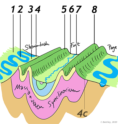 """Cartoon oblique cross-sectional view of the overall structure of the northern Shenandoah Valley region: there are three valleys, from left to right: Shenandoah, Fort, and Page. They are separated by ridges of the Massanutten mountain system. The mouuntain ridges are """"held up"""" by the same sandstone layer, which dips down and under the Fort Valley before coming up again on the other side. The overall structure looks like a taco shell: with the layers above and beneath the sandstone doing the same thing: dipping right on the left side of the sketch, dipping left on the right side of the sketch."""