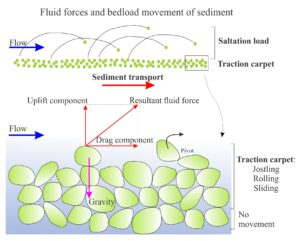 Diagram showing the components of bedload transport of loose sediment