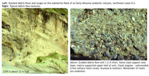 Volcanogenic, submarine debris flow on the flanks of Early miocene andesite volcanoes, New Zealand