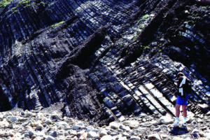 Tabbular bedded turbidites
