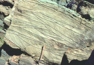 Detail of trough crossbeds from the previous image