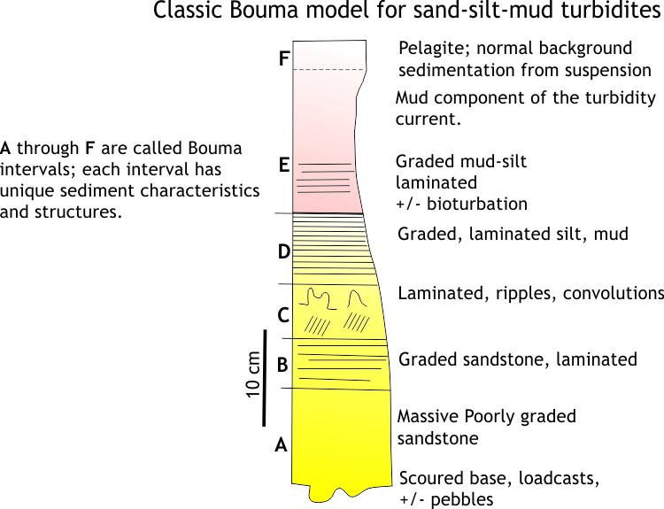 Diagramatic illustration of the iconic Bouma Sequence for turbidites