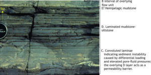 A Fine-grained, C-D-E turbidite, Paleoproterozoic, Belcher Islands