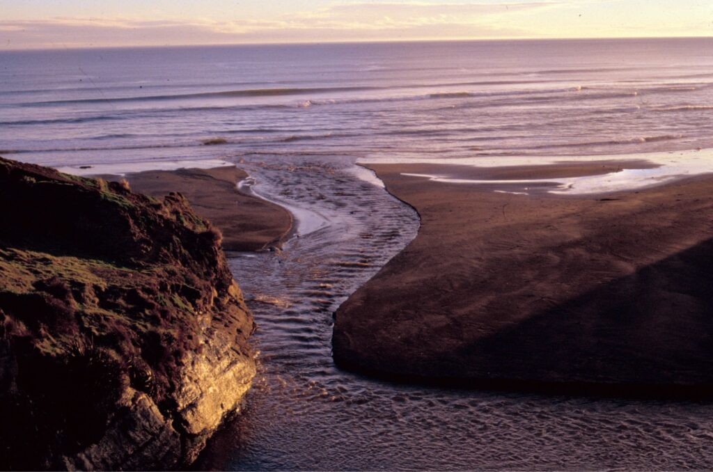 Surface sea waves meet standing waves on a New Zealand west coast river