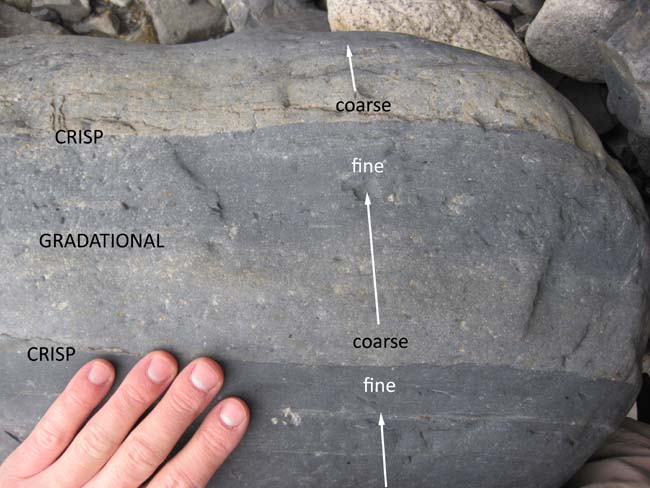 Annotated photograph showing three graded beds, with a human hand for scale. The lowermost bed is just fine and dark. The middle bed is coarse at the bottom and fine at the top. A second crisp contact at the top of the second bed marks the transition from dark mud to light-colored coarse sand.