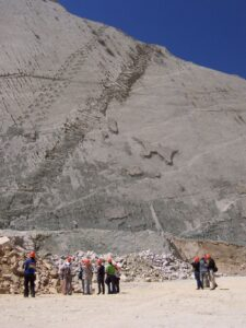 The huge rock wall has dozens of tracks in a straight line.