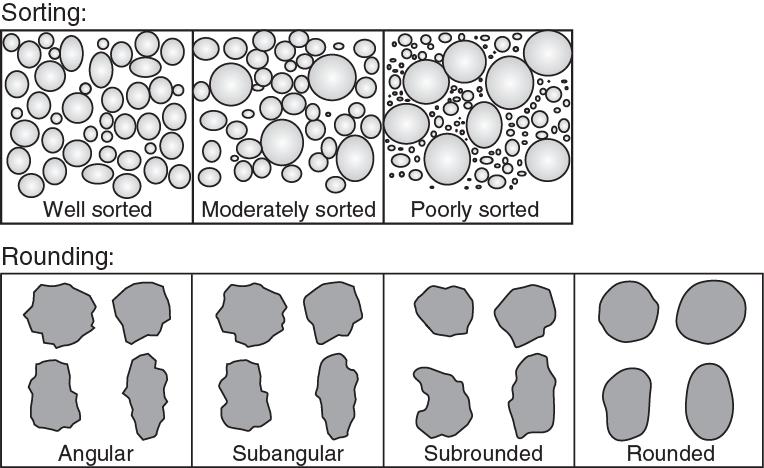 Grain sorting and shape chart