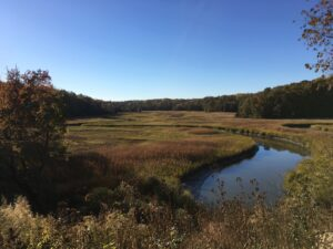 Meanders of Taskinas Creek, York River State Park, Virginia