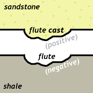 """Cartoon cross-section showing how infilling of a flute cut into mud by sand results in a topographically """"positive"""" (protruding) flute *cast*."""