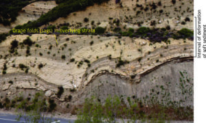 Soft sediment folds and faults, Pliocene Ridge Basin, California