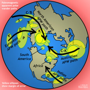 Map view of the northern hemisphere, looking down on the North Pole. Various continents apparent polar wander paths are shown, all converging through time to the modern North Pole.